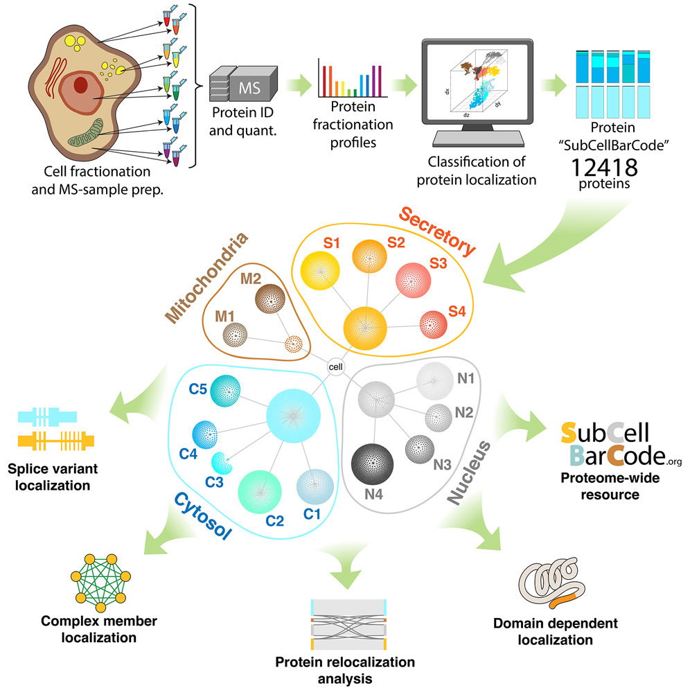 New analysis method for mapping proteins shared in an open database
